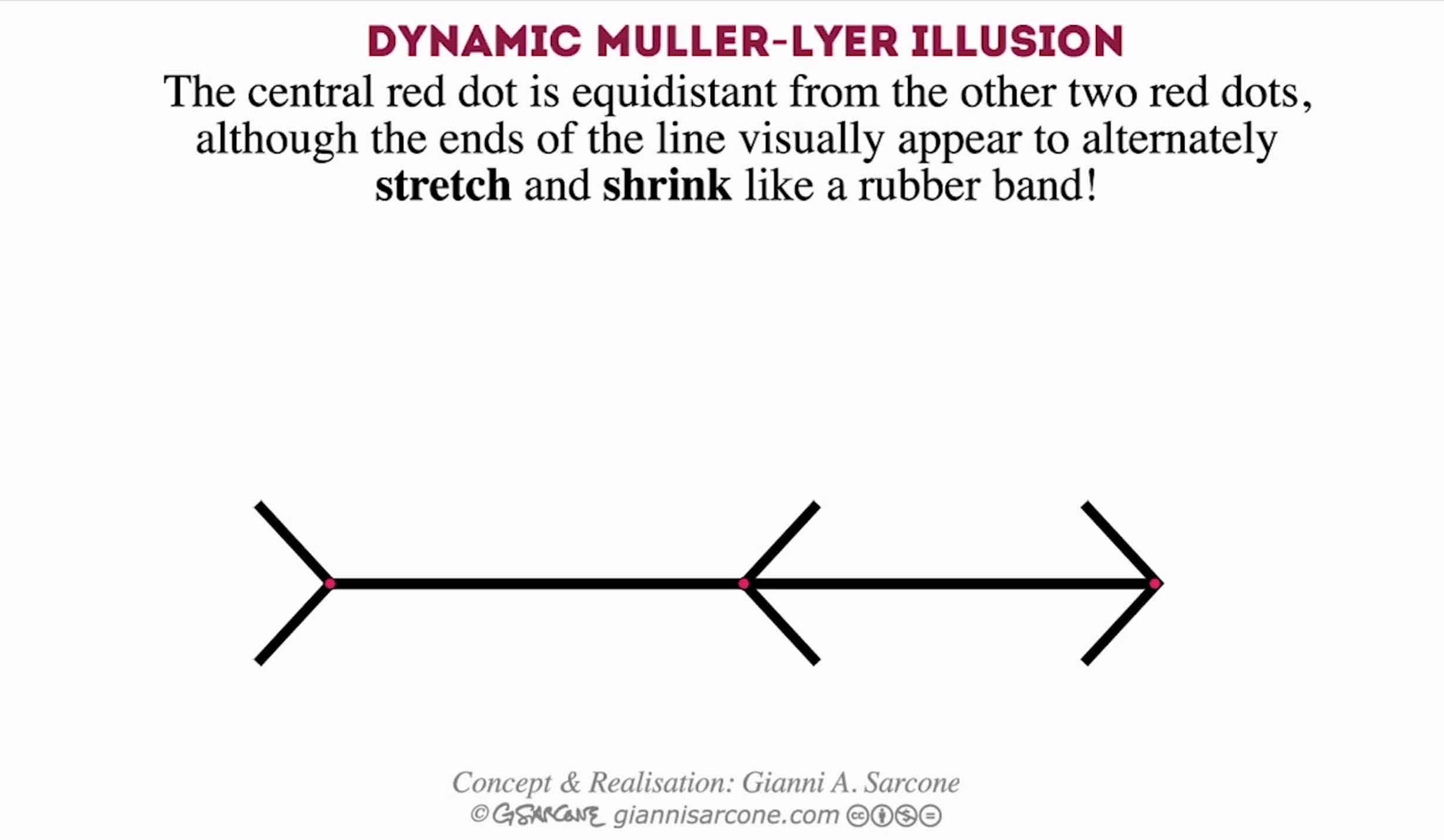best illusion of the year contest best illusion of the year contest